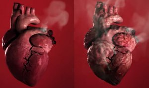 heart and smoking
