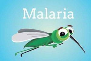 I am a Malaria Mosquito